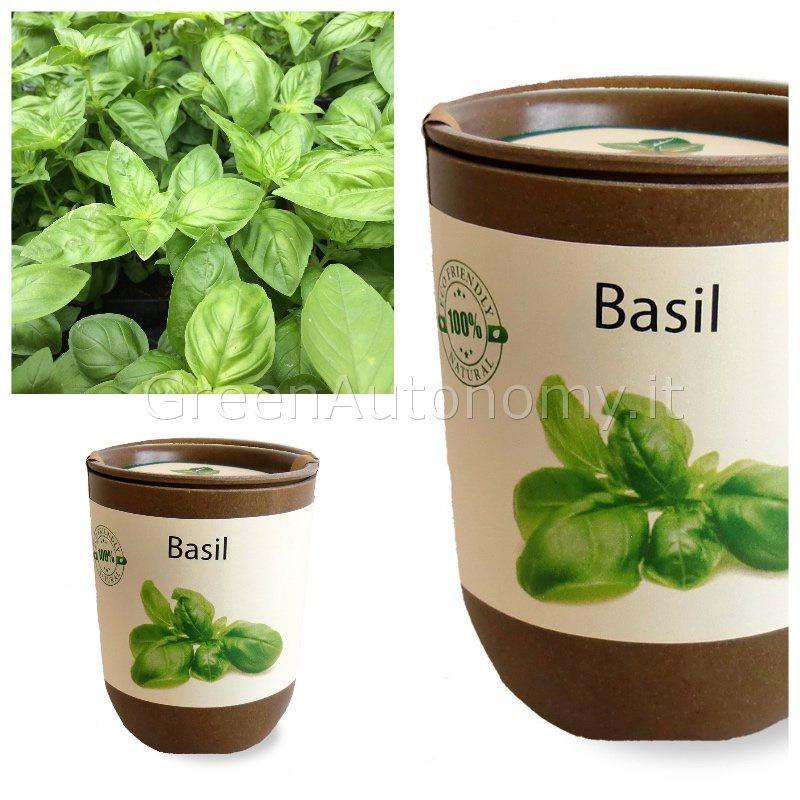 Ecocan un vaso in bamb con semi di piante aromatiche for Acquisto piante peperoncino