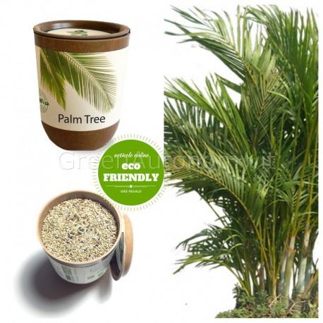 Ecocan vaso ecologico palma