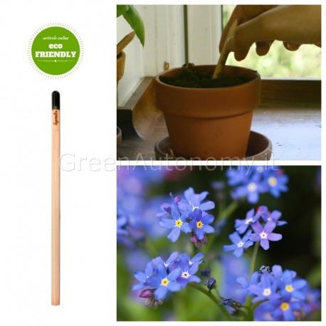 Sprout eco-matita Non ti scordar di mè