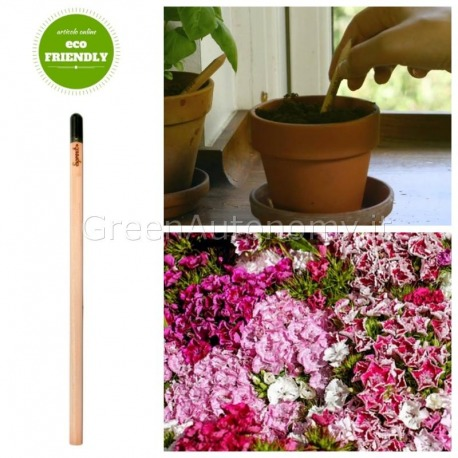 Eco-matita sprout garofano online