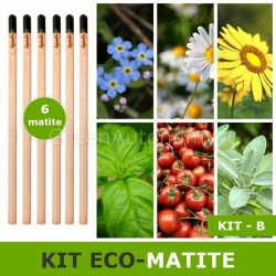 kit Eco-matita da piantare e far germogliare