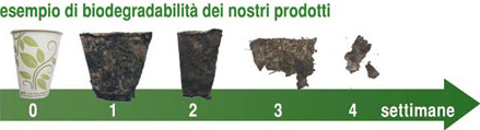 Eco-stoviglie biodegradabili