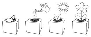 istruzioni ecocube
