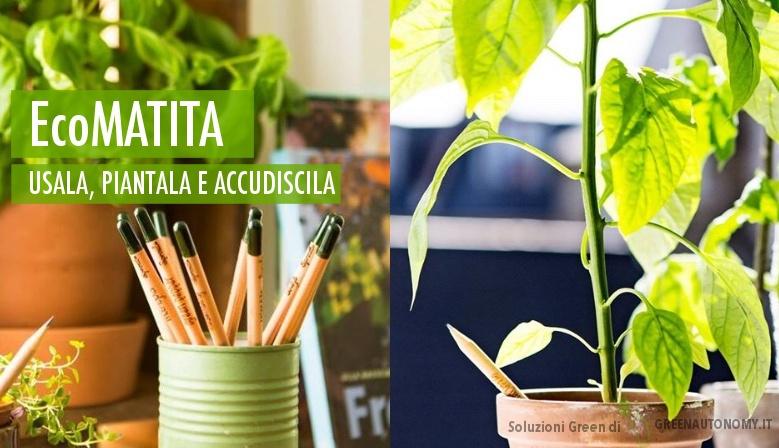Idee regalo? EcoMatita da piantare, ideale per bomboniere